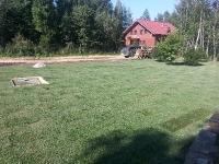 Только уложили рулонный газон